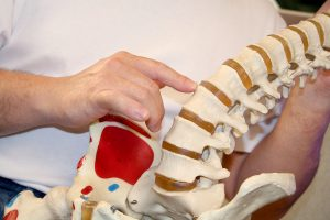 Chiropractic care for a healthy spine
